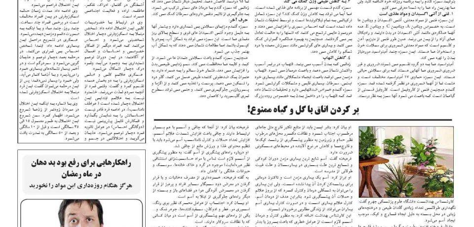 هفتهنامه طلوع لامرد و مهر – شماره ۱۲۰ – صفحه ۸